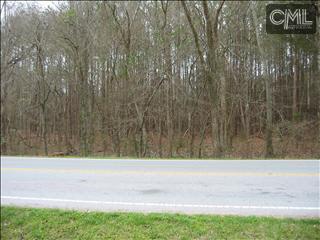 Photo of home for sale at 0 AMICKS FERRY Road, Chapin SC