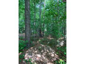 Property for sale at 207 Fairway Ridge Drive, Chapin,  South Carolina 29036