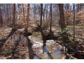 Property for sale at 0 Peach Road, Ridgeway,  South Carolina 29130
