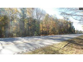 Property for sale at Hwy 76, Chapin  29036