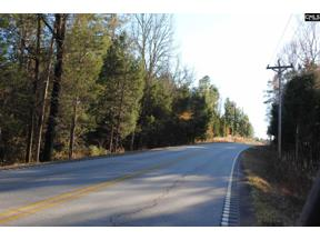 Property for sale at E/S Old Hilton Road, Chapin  29036