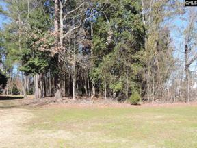 Property for sale at 110 Pointe Overlook Drive Unit: 23, Chapin,  South Carolina 29036