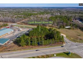 Property for sale at 7508 Broad River Road, Irmo  29063