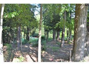 Property for sale at 226 Fairway Ridge Drive, Chapin,  South Carolina 29036