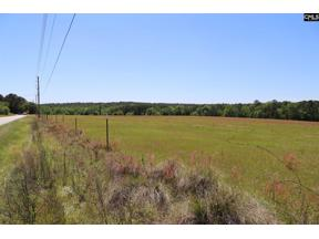 Property for sale at 172 Muddy Springs Road, Lexington,  South Carolina 29073