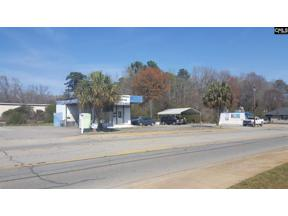 Property for sale at 1240 Chapin Road, Chapin,  South Carolina 29036