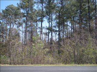 Photo of home for sale at 138 MCSWAIN Drive, West Columbia SC