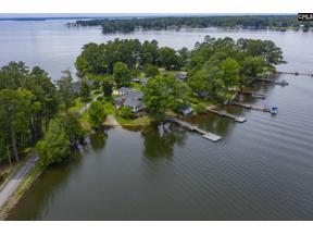 Property for sale at 208 Amenity Road, Chapin,  South Carolina 29036