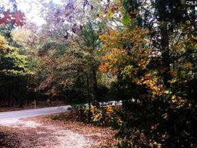 Property for sale at 2377 Wessinger Road, Chapin,  South Carolina 29036
