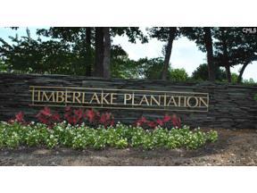 Property for sale at 369 Oxenbridge Way, Chapin,  South Carolina 29036