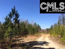 Photo of home for sale at 0 lot A Courtland Road, Chapin SC