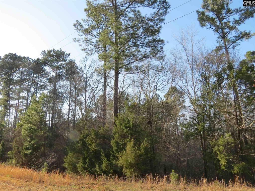 Photo of home for sale at 8657 Winnsboro Road, Blythewood SC