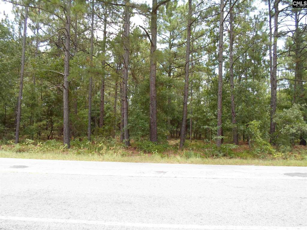 Photo of home for sale at TBD1 Two Notch Road, Lexington SC