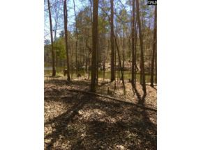 Property for sale at 120 Serenity Pointe Unit: Lot #38, Leesville,  South Carolina 29070