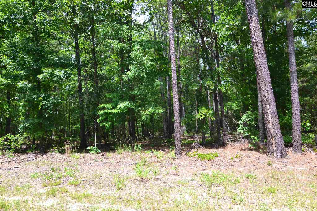 Photo of home for sale at TBD CROSS CREEK Road, Ridgeway SC