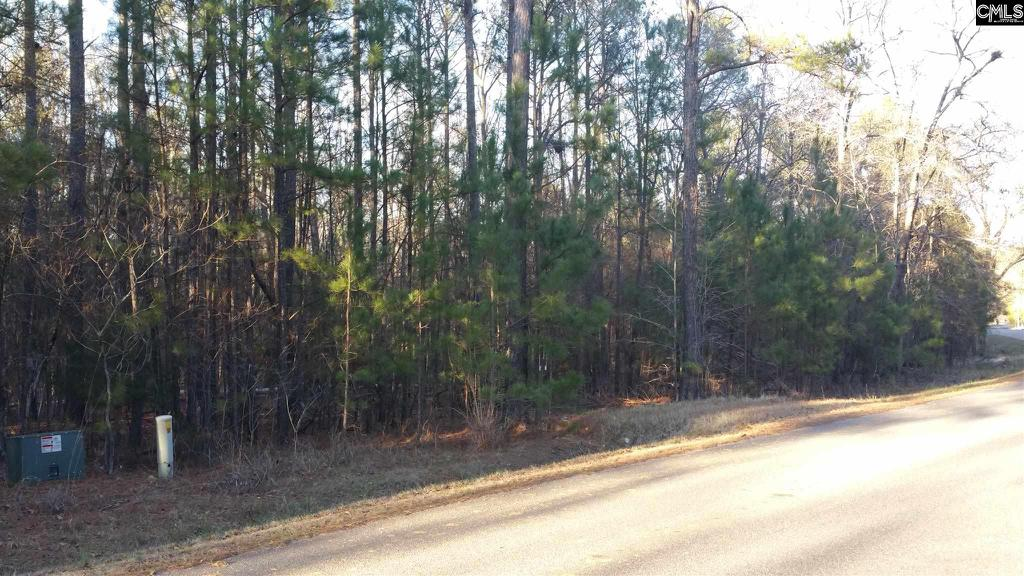 Photo of home for sale at 139 Scooter Bridge Road, Batesburg SC
