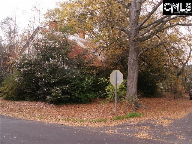 Photo of home for sale at 133 Clark Street, Chapin SC