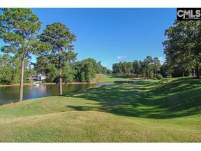 Property for sale at 533 Wateroak Trail, Chapin,  South Carolina 29036