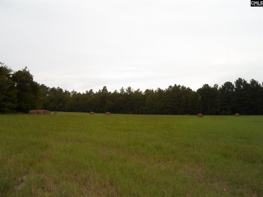 Photo of home for sale at TBD2 Two Notch Road, Lexington SC