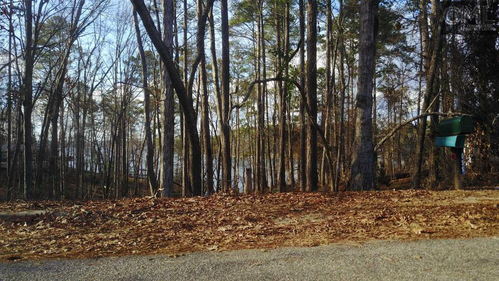 Photo of home for sale at 0 HILTON SOUND Drive, Chapin SC