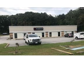 Property for sale at 141 Riverchase Way, Lexington,  South Carolina 29072