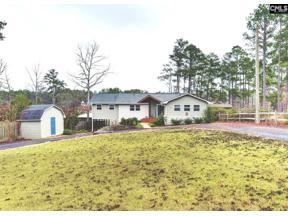 Property for sale at 512 N Lakeshore Drive, Gilbert,  South Carolina 29054