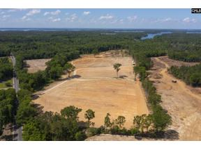 Property for sale at 2544 Wessinger Road, Chapin,  South Carolina 29036