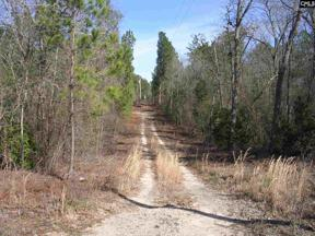 Property for sale at 433 Laura Brodie Road, Leesville,  South Carolina 29070