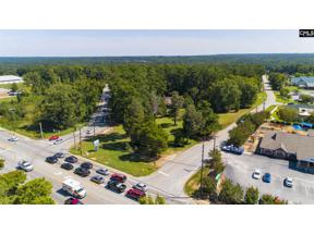 Property for sale at 2408 Mineral Springs Road, Lexington,  South Carolina 29072