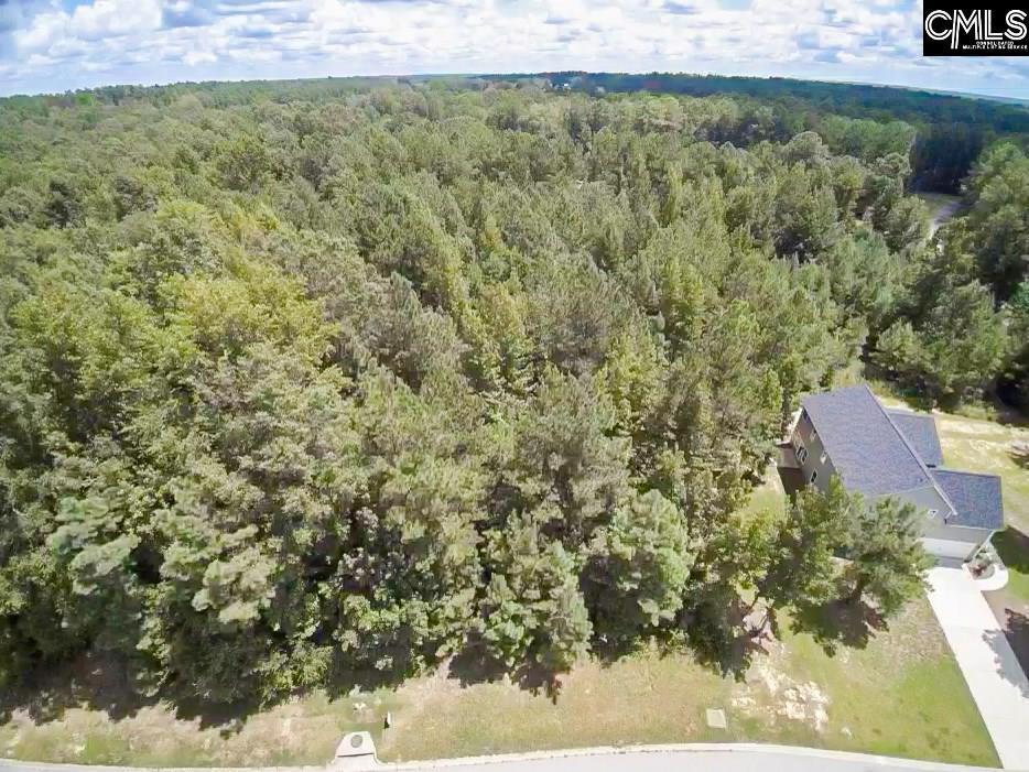 Photo of home for sale at 334 Creek Ridge Loop, Blythewood SC