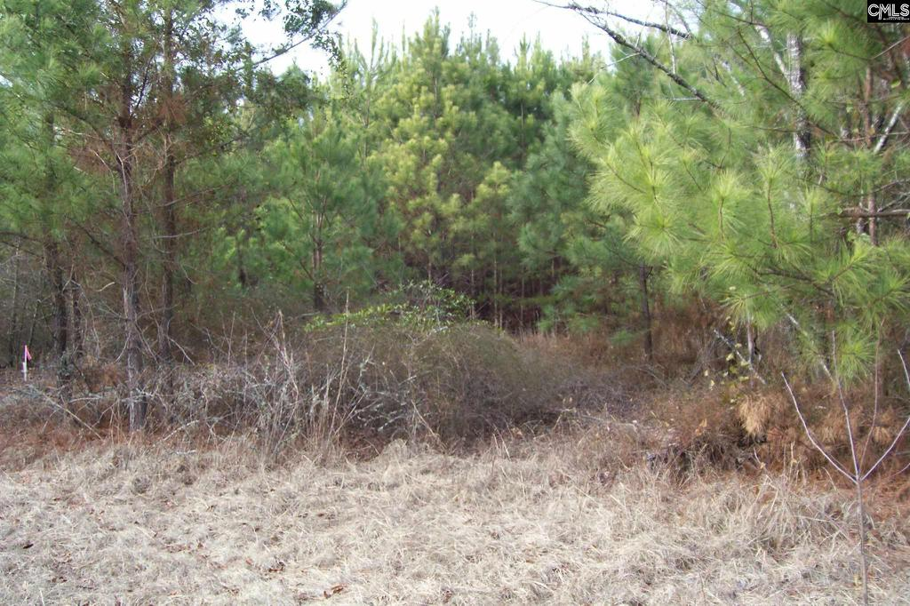 Photo of home for sale at 406A Cook Road, Lugoff SC