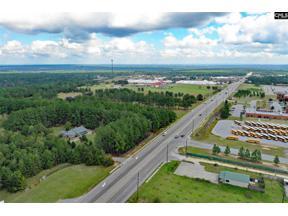 Property for sale at 5714 Platt Springs Road, Lexington,  South Carolina 29073