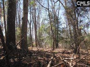 Property for sale at 517 Wateroak Trail, Chapin,  South Carolina 29036