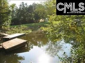 Photo of home for sale at 302 Smallwood Drive, Chapin SC