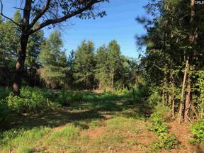 Property for sale at 0 Chapin Road Pt Lot 4 Unit: Lot 4, Chapin,  South Carolina 29036