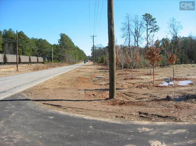 Photo of home for sale at 116 SNAPDRAGON Court, Chapin SC