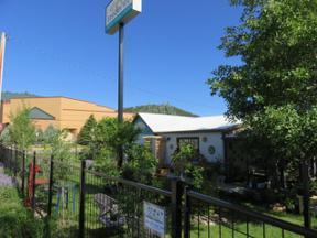 Property for sale at 150 Poplar Street, Hill City,  South Dakota 57745