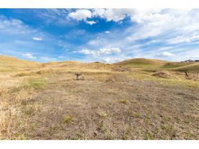 Property for sale at Tbd, Hermosa,  South Dakota 57744