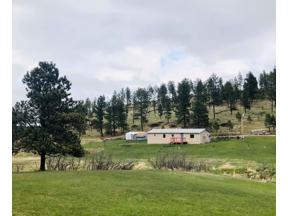 Property for sale at Lot 14 A 11800 Deerfield Road, Hill City,  South Dakota 57745