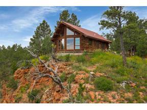 Property for sale at 11598 Farmer Road, Custer,  South Dakota 57730