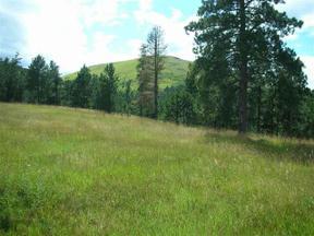 Property for sale at Tract A Mattson Lane, Deadwood,  South Dakota 57732