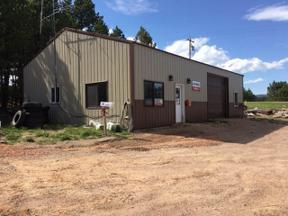 Property for sale at 12475 Highway 16/16A, Custer,  South Dakota 57730