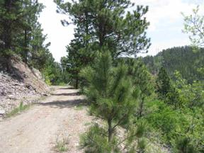 Property for sale at Cutting Mine Road, Lead,  South Dakota 57754