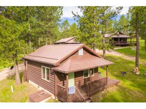 Property for sale at 11612 Hwy 16, Custer,  South Dakota 57730