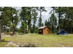 Property for sale at Tbd Forest Service Rd #397, Custer,  South Dakota 57730