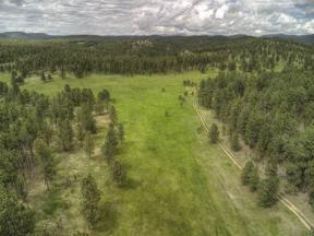 Property for sale at Tbd Forest Service Road, Custer,  South Dakota 57730