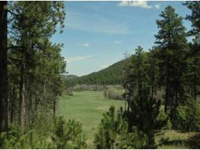 Property for sale at Government Lots Highway 85, Deadwood,  South Dakota 57732