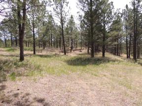 Property for sale at Lot 2 Concho Trail, Hermosa,  South Dakota 57744