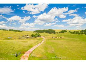 Property for sale at 26690 Highway 89, Custer,  South Dakota 57730