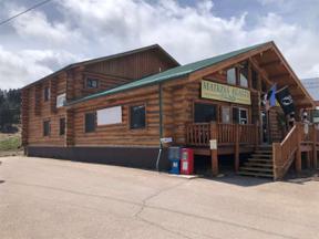 Property for sale at 451 Main Street, Hill City,  South Dakota 57745